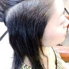 髪のツヤは女性の生命(イノチ)ですの記事より