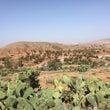 モロッコ旅行記 ③ア…