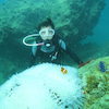 青の洞窟ツアー&パラセーリング♪9月の旅行の予約も沖縄満喫♪専門店のテイクダイブでOK!!の画像