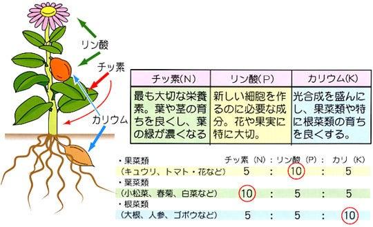 カリ 酸 窒素 リン