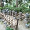 栃木県足利市:日本最古の学校 足利学校の教育(儒学について)の画像