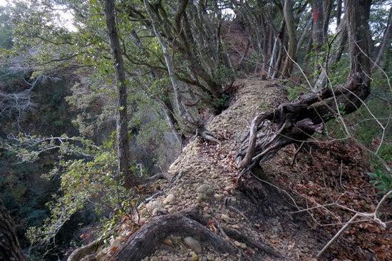 【写20】小笠山砦