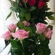 大量のバラの花!!!
