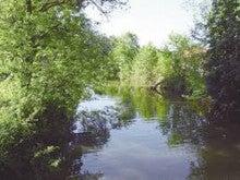 オワーズ川の岸辺 うらつつみ00694 | うらつつみ
