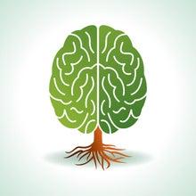 健康で優秀な脳の作り方