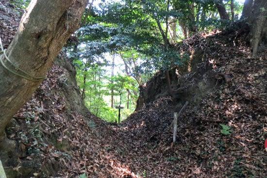 【写9】八幡平の城