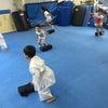 品川区  東品川  青物横丁  品川シーサイド  幼年の空手教室の画像