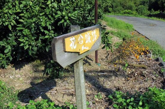 【写3】花倉城