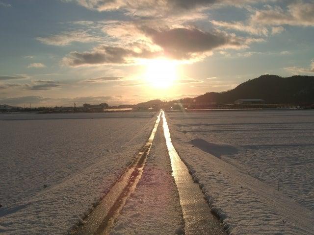 太陽に向かう一本道