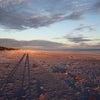 世界一美しいビーチ2日目の画像