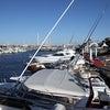 夢の島マリーナのボートショーに行ってきました。の画像
