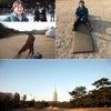 明治神宮が好きなんですの画像