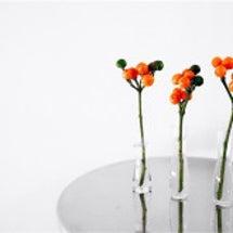 コニカルオレンジと秋…