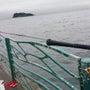大雨の中で大サバ釣っ…