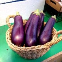長野ブランド野菜入荷…