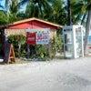 #ランギロア 島に、 #タヒチ 島でおなじみの「アレ」が登場 #PK #PRの画像