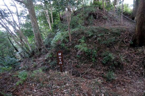 【写9】小瀬戸城