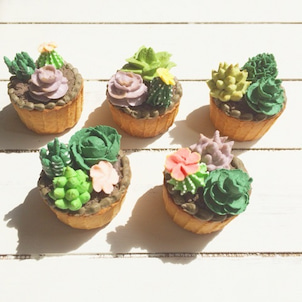 多肉植物のアイシングクッキーの画像