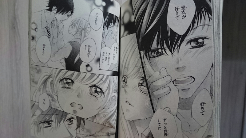 true love 漫画 ネタバレ 最終 回