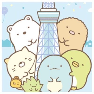 東京スカイツリータウン ソラマチ すみっコぐらしショップへ初潜入ッ‼︎の記事に添付されている画像