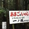 あまごとイノシシ「一ノ坂」:東青山の画像