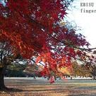 秋の代々木公園 親子写真撮影会のお知らせの記事より