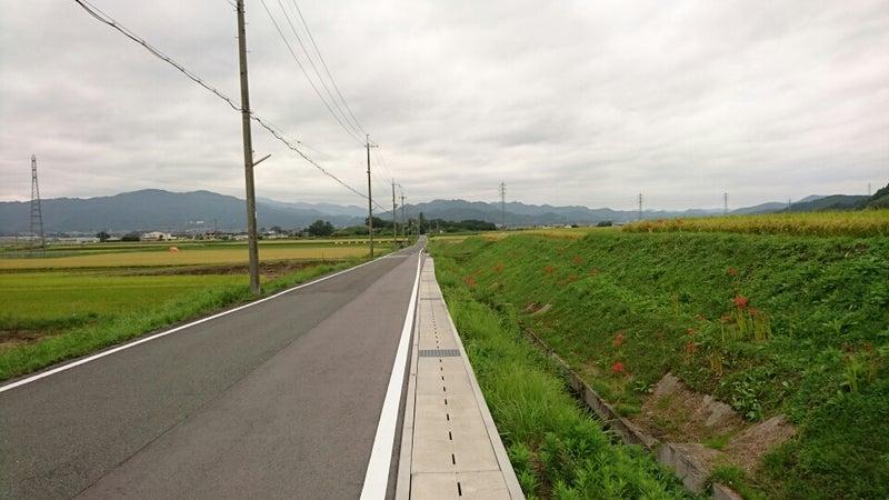 千代川から亀岡② | 大概京都の神...