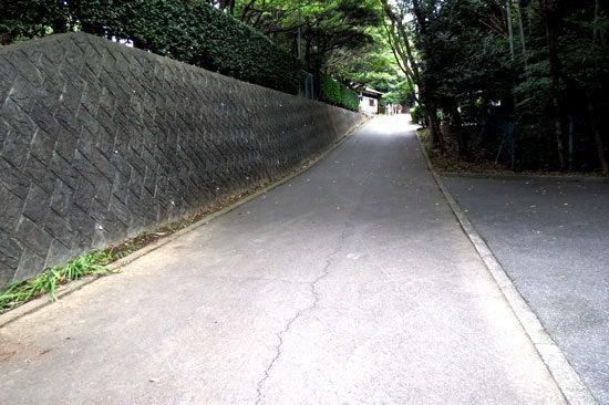 【写7】泉頭城