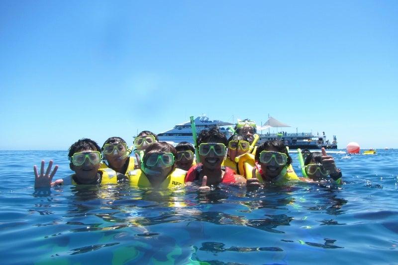 ReefWorld8