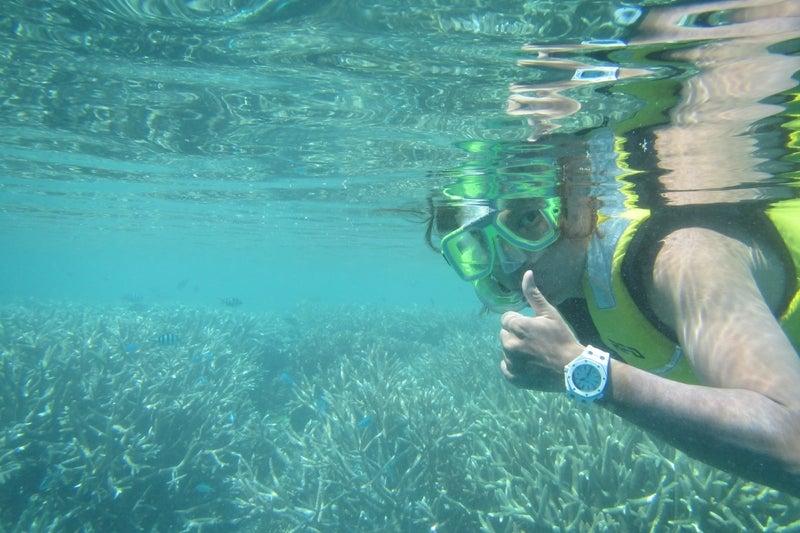 ReefWorld10