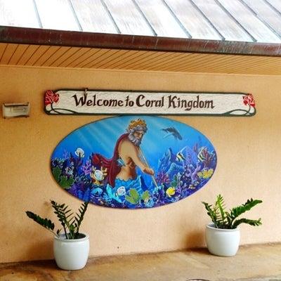 ハワイ・コーラル・キングダムのランチとおみやげの記事に添付されている画像
