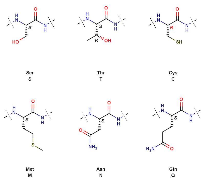創薬メモタンパク質の側鎖についてコメント
