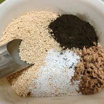 【食虫植物】私の球根ドロセラの植えつけ方の記事に添付されている画像