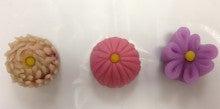 3種類の菊