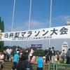 白井梨マラソン大会に参加してきましたの画像