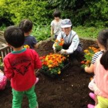 公園の花植え&芋煮会…