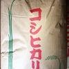 お米が美味しい季節になりました。の画像