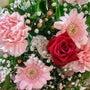 Flower ♡