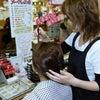 <埼玉県>お肌の専門店 おぎのの画像