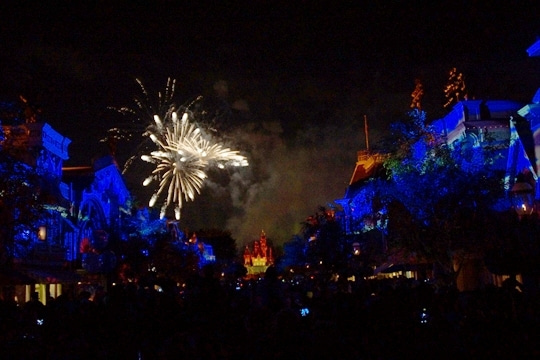 Disneyland Forever その15