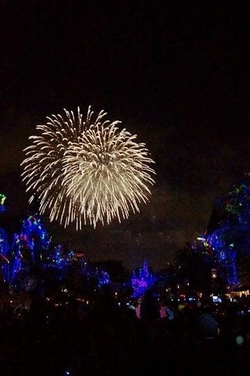 Disneyland Forever その9