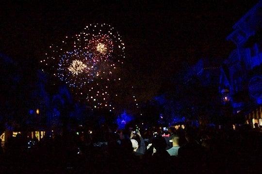 Disneyland Forever その8