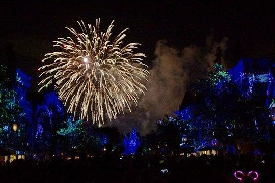 Disneyland Forever その20