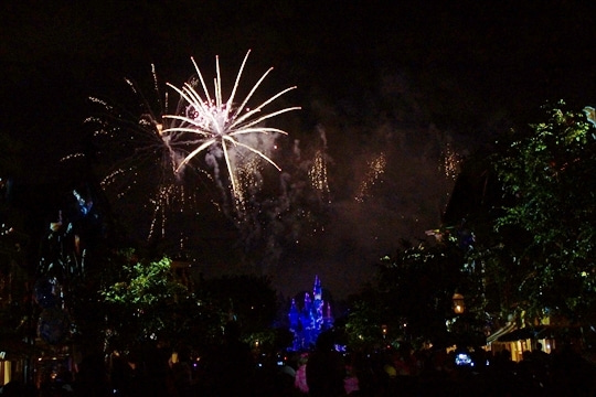 Disneyland Forever その11