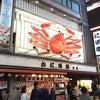 大阪に行きます!21日商談できます!!の画像