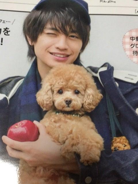 子犬とsexy zone中島健人