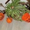今年も ハロウィンの季節♪の画像