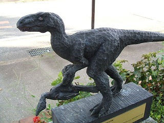 福井県勝山市を有名にするのだ。-キタダニリュウ(ドロマエオサウルス科)