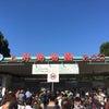 上野動物園&大統領で昼焼きとん♪の画像