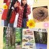 『長野市移職住フェアinTOKYO』の画像